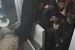 Tổng thống Pháp sốc khi xem video cảnh sát hành hung người da màu