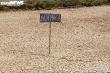 Nghệ An hạn hán kỷ lục 50 năm qua: Hơn 70 ngày không có mưa