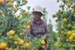 Ảnh: Thủ phủ quất cảnh miền Trung vào vụ Tết, nông dân mỏi mắt chờ thương lái