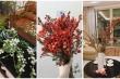 4 loại hoa nhập khẩu giá 'bèo' gây sốt thị trường Tết 2020
