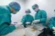 Vắc xin COVID-19 'made in Vietnam' vượt tiến độ dự kiến