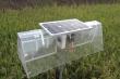 Thầy giáo miền Tây sáng chế máy diệt rầy bằng năng lượng mặt trời