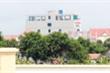 Khách sạn 7 tầng xây sai phép ở Vân Đồn bị cưỡng chế trong 30 ngày