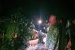 Sạt lở kinh hoàng ở Nam Trà My: Quân đội xuyên đêm cưa cây, mở đường