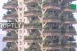 Kỳ lạ khu rừng thẳng đứng bao trùm cao ốc ở Trung Quốc