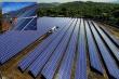 Doanh nghiệp điện mặt trời lo phá sản vì giá