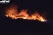 Liên tiếp xảy ra cháy rừng, Chủ tịch tỉnh Nghệ An yêu cầu điều tra xử lý nghiêm