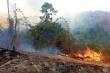 Dân đốt thực bì, hơn 10 ha rừng Quảng Nam bị thiêu rụi