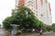 TP.HCM dỡ phong toả 14 tầng chung cư Thái An 2B