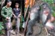 Bắt 5 kẻ bắn chết 2 con voọc xám quý hiếm ở Nghệ An