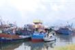 Bão số 5 cách quần đảo Hoàng Sa hơn 200km, Đà Nẵng di dời 72.000 người