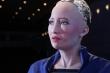 Trí tuệ nhân tạo có chiếm lĩnh thế giới và kiểm soát chúng ta?
