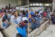 Hơn 100 cảnh sát ập vào sới bạc 'khủng' ở Cần Thơ, bắt hơn 150 người