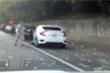 Video: Hàng trăm nghìn USD bay ra từ xe tải, tài xế Mỹ dừng xe trên cao tốc lao ra hôi của