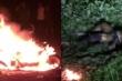 Tá hỏa phát hiện thi thể người phụ nữ cháy đen trong công viên ở miền Tây