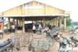 Ảnh: Trước 'cơn bão' dịch tả lợn, chợ heo lớn nhất Việt Nam lâm cảnh lao đao