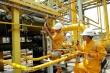 Hiệp hội Năng lượng Việt Nam kiến nghị tháo gỡ khó khăn cho PVN