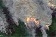 'Đám cháy thây ma' ở Bắc Cực hồi sinh từ băng giá