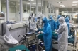 Hai người Việt Nam đăng ký hiến phổi cho bệnh nhân 91 phi công người Anh