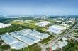 Hiệp định EVFTA tác động thế nào đến bất động sản Việt Nam?