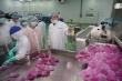 SCB đồng hành cùng nông dân Việt giữa mùa dịch virus corona