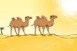 Bức tranh lạc đà đi trên sa mạc này thiếu một thứ rất quan trọng, đó là gì?