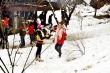 Thật ấu trĩ khi ác cảm, chỉ trích những người đổ xô đi ngắm tuyết rơi