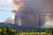 Cháy rừng ở Nghệ An, hàng ngàn người tham gia dập lửa