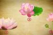 Chọn một bông hoa sen yêu thích để khám phá vận may của bạn