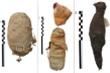 Bí ẩn được hé lộ từ xác ướp động vật 2.000 năm tuổi