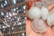 Mưa đá to bằng quả trứng gà trút xuống Nghệ An, xuyên thủng hàng chục mái nhà