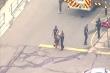 Video: Cảnh sát bắt nghi phạm xả súng làm 10 người chết ở Mỹ