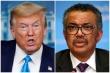 Tổng Giám đốc WHO: Không giấu Mỹ bất cứ thông tin gì về COVID-19