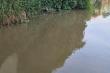 Biến nước mương ô nhiễm thành nước tinh khiết cung cấp cho trường học