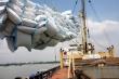 Bộ Công thương khẩn cấp xin ý kiến về xuất khẩu gạo nếp