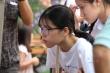 Chiều nay 3/8 học sinh Hà Nội bắt đầu xác nhận nhập học trực tuyến vào lớp 10