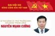 Infographic: Sự nghiệpPhó Trưởng ban Đối ngoại Trung ương Nguyễn Mạnh Cường