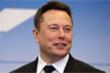 Cổ phiếu Tesla tăng chóng mặt, Elon Musk trở thành người giàu thứ tư thế giới