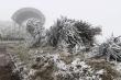 Video: Băng tuyết phủ trắng cành cây ngọn cỏ ở vùng núi Bắc Bộ