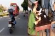 Xử phạt tài xế lái xe máy vượt đèn đỏ, đứng lên yên xe 'làm xiếc' trên quốc lộ