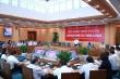 Chủ tịch Hà Nội yêu cầu rà soát, cắt tỉa toàn bộ cây xanh trong trường học