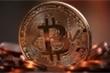 Dự báo 'sốc': 5 năm tới, Bitcoin sẽ đạt đỉnh 1,2 triệu USD