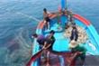 Trước lệnh cấm đánh bắt cá của Trung Quốc, Cục kiểm ngư có biện pháp gì?