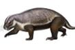 'Quái thú điên' sống cách đây 66 triệu năm khiến các nhà khoa học bối rối