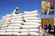 'Lùm xùm' xuất khẩu gạo: Bộ Công Thương 'tố ngược' Bộ Tài chính