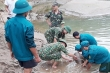 Phát hiện bom khủng nặng gần 350 kg gần quốc lộ 7 Nghệ An
