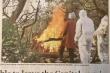 Đại sứ Việt Nam tại Ấn Độ: Chưa bao giờ cái chết và sự sống gần nhau đến thế