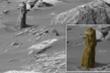 Vật thể nghi 'cây hóa đá' trên sao Hỏa