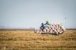 EVFTA có hiệu lực, loạt nông sản Việt đổ bộ thị trường châu Âu