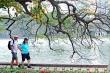 Đến lượt Sở Du lịch Hà Nội xin giảm, giãn thuế cho doanh nghiệp